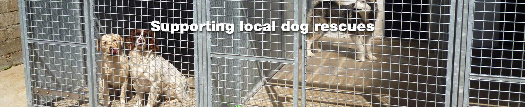 Supporting local dog rescue centres