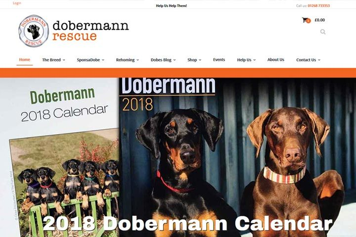 Dobermann Rescue, Wickford