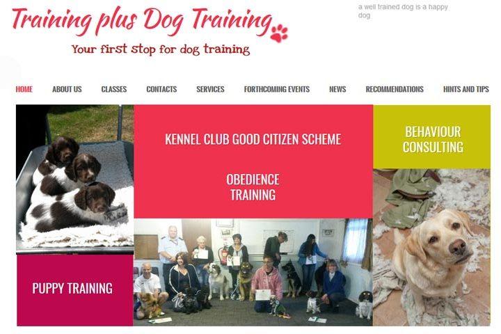 Training Plus, Cressing