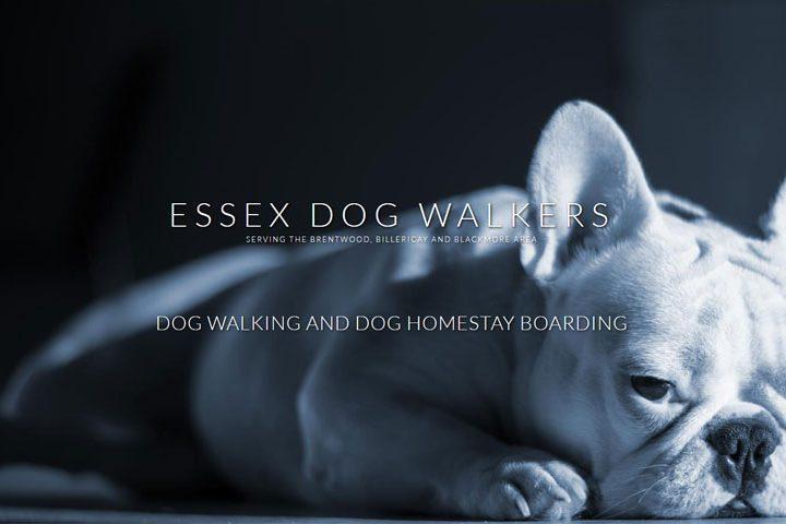 Essex Dog Walking, Brentwood
