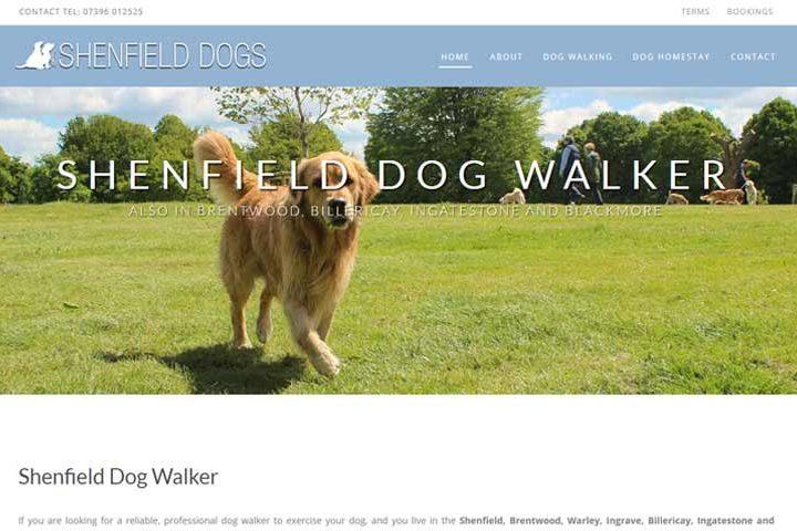 Shenfield dog walker