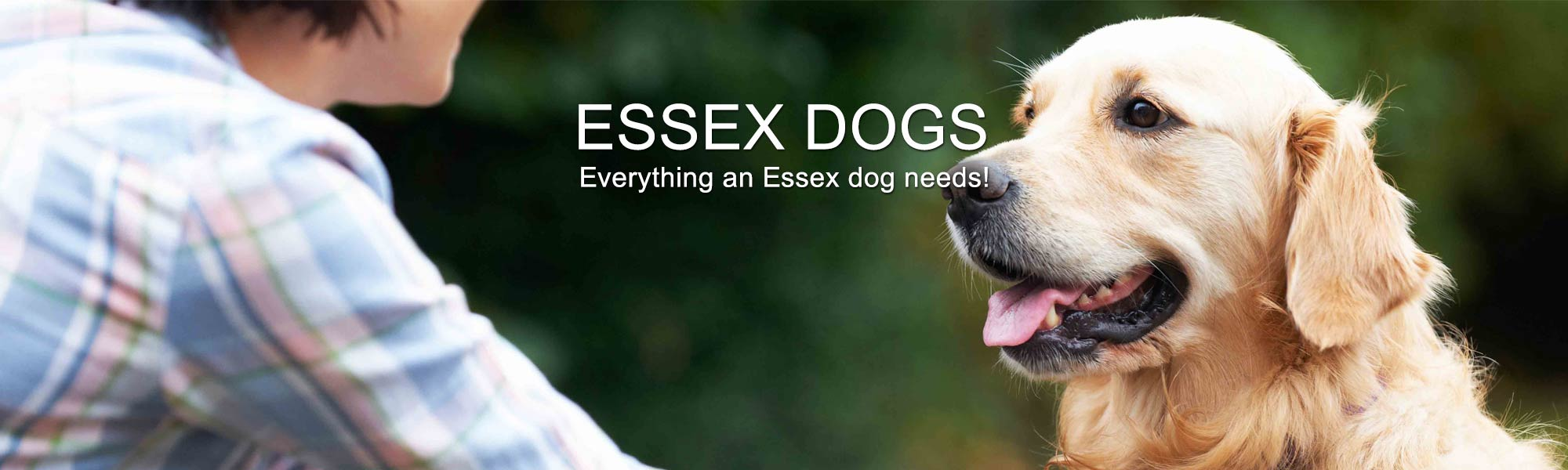 Essex Dogs Header