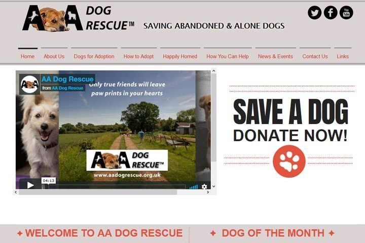 AA Dog Rescue, Latchingdon
